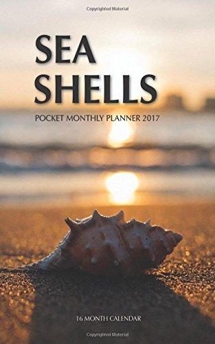 09 Seashell - 3