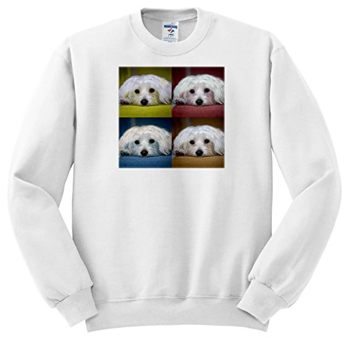 RinaPiro Dogs - Maltese. Pop Art. - Sweatshirts - Youth Sweatshirt Large(14-16) (ss_282828_12)