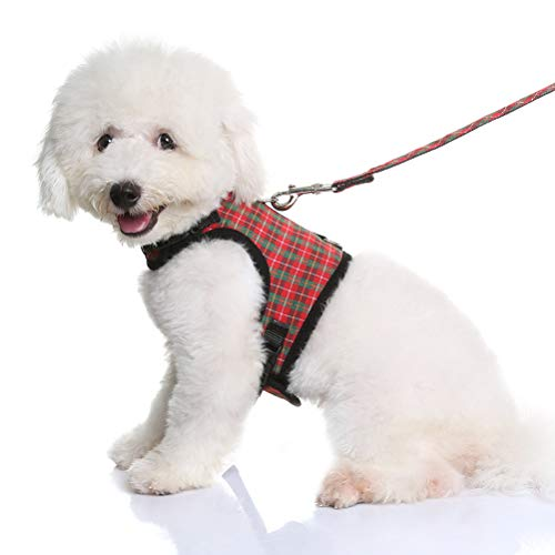 Top dog harness medium by kooltail for 2020