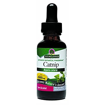 CatNip for Cats Nature's Answer Catnip Herb with Organic Alcohol, 1-Fluid Ounce | Natural Calming Aid | Stress Reliever | Anxiety… [tag]