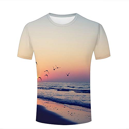 Mens Cool 3D Print T Shirts Flying Seagull/Seaside Sunset Landscape Short Sleeve Crewneck Tee Shirts Top for Summer Casual Couple Tees -