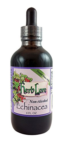 Herb Lore Organic Echinacea Tincture - 4 Ounces - Alcohol Free - Immune System Support For Children and Adults (Kids Echinacea Purpurea Tincture)