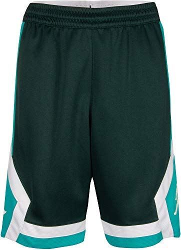 Jordan Boys' Dry Rise Shorts (M, Midnight Spruce)