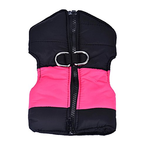 LOVELYIVA Medium Winter Quilted harness product image