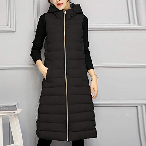 Y56 Y56 Manteau Noir Manteau Femme Femme nzggWxc