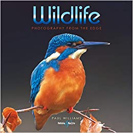 Image result for wildlife photography paul williams