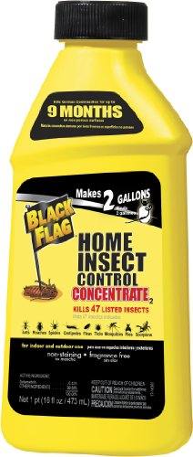 Black Flag Home Concentrate Insect Control, 16-Ounce
