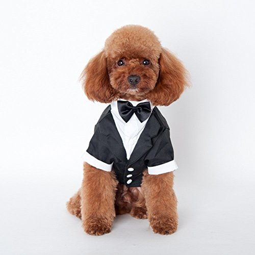LXLP Dapper Dog Pet Puppy Costume Business Suit Pet Small Dog Clothes Stylish Suit Bow Tie Costume Formal Tuxedo with Black Tie (Large)