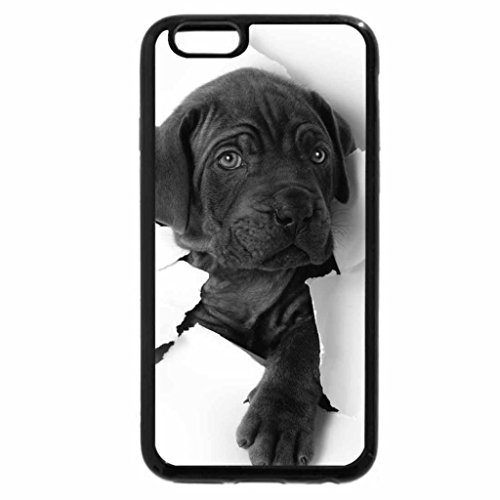 iPhone 6S Plus Case, iPhone 6 Plus Case (Black & White) - Dog at a broken wall