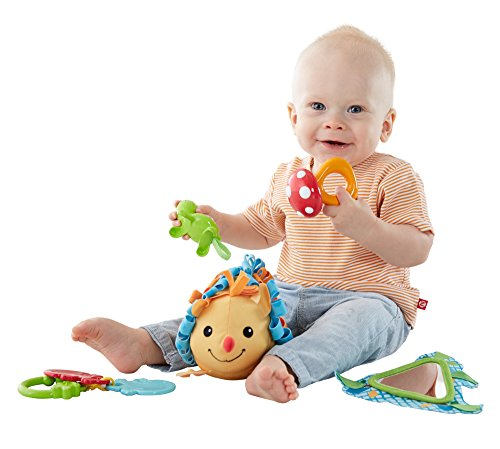 Fisher-Price-Moonlight-Meadow-5-toy-Activity-Set