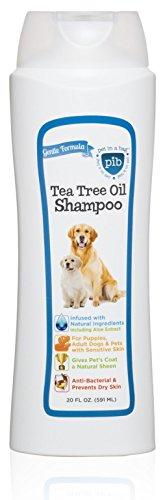 Creative Pet Group Tree Shampoo product image