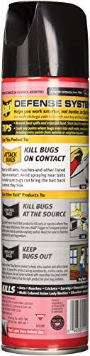 Buy roach killer amazon