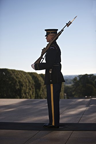 Posterazzi PSTTMO100593M Honor Guard at The Tomb of The Unknown Soldier National Cemetery Arlington Virginia USA Poster Print, 11 x 17