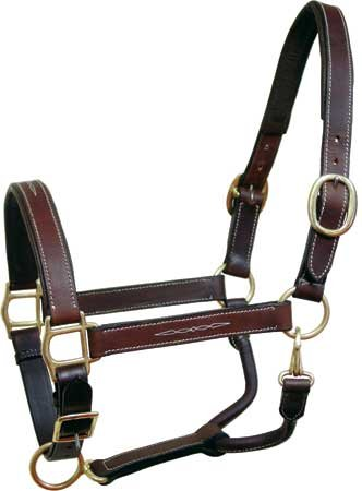 - Derby Originals Fancy Stitch Padded Adjustable Leather Horse Halter (Draft)