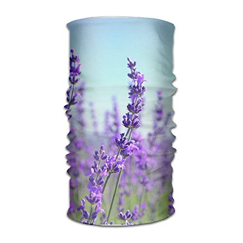 Close Up Tilt Shot of Lavender Flowers Field Original Headband with Multi-Function Sports and Leisure Headwear UV Protection Sports Neck, Sweat-Absorbent Microfiber Running, Yoga, Hiking - Tilt Womens Jeans Pants