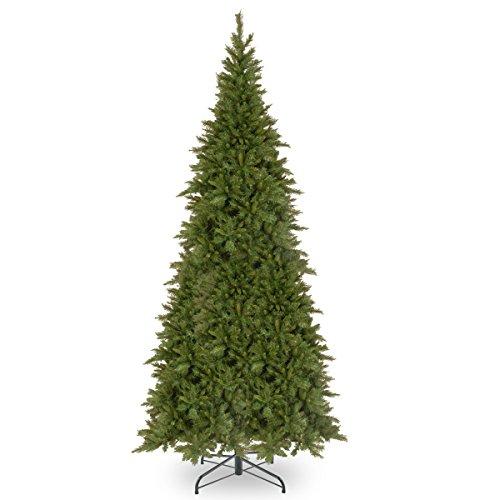 National Tree 10 Foot Tiffany Fir Slim Tree ()