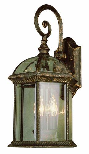 Trans Globe Lighting 44181 BC Outdoor Wentworth 19