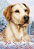 "Yellow Labrador Retriever by Tamara Burnett Winter Berries Garden Dog Breed Flag 12"" x 18″ Review"
