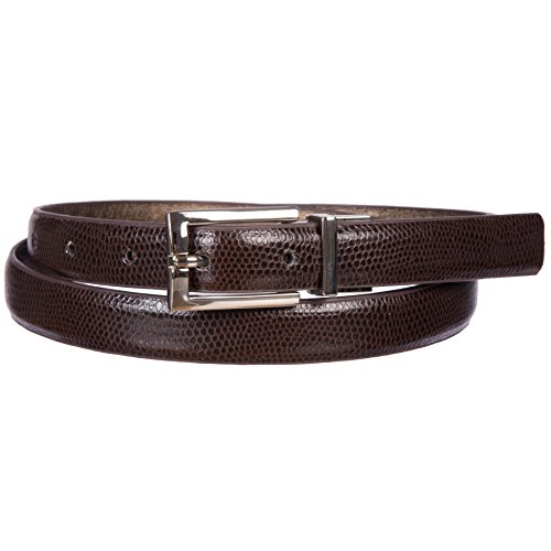 Sunny Belt Women's reversible Faux Leather Belt with Metal Buckle (Brown Snakeskin/Gold, M) (Buckle Gold Snake)