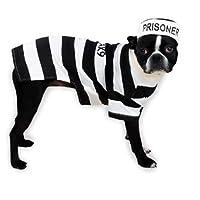 Traje canino de la prisión canino, grande
