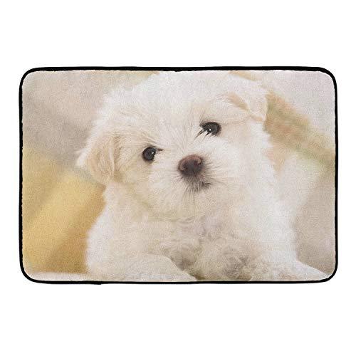 White Dog Memory Foam Bath Rugs Kitchen Mat Anti-Slip Bottom Doormat Rug Carpet, Home Decor Shower Mat Bathtub Rug - 16 x 24 -