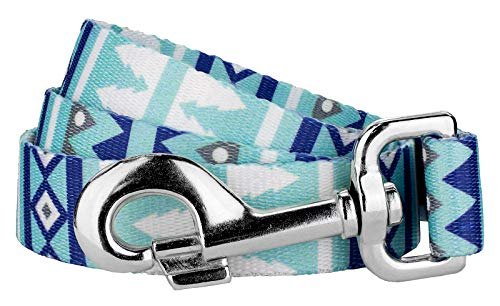 Country Brook Design | 1 Inch Snowy Pines Dog Leash - 6 feet