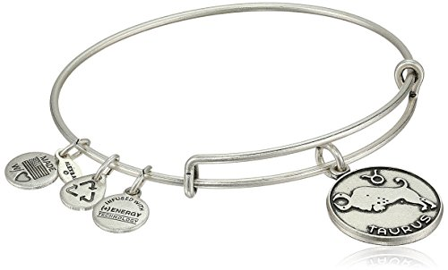 alex-and-ani-taurus-ii-expandable-rafaelian-silver-tone-wire-bangle-bracelet-725