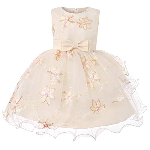 Dress for Baby Girl Elegant Baby Girls Dresses for Wedding Flower Girl Dress 2t Baby Girl Dresses Special Occasion Newborn Party Wear Dresses Princess Birthday Dresses for - 90 Wine