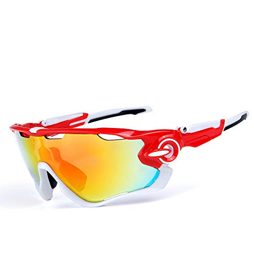 HYHMJ Bicycle Goggles, Motorcycle Goggles Ski Mirror Sunglasses Five Pieces of Outdoor Polarized Anti-Fog Riding Glasses Convertible Lenses can Remove Mirror Legs,D