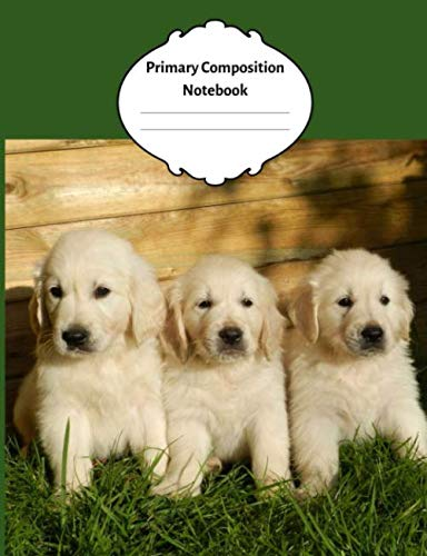 Primary Composition Notebook: Adorable cute Golden for sale  Delivered anywhere in USA