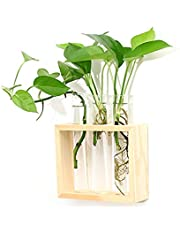 Ivolador Wall Haning Test Tube Planter Bud Vase in Wood Stand for Propagating Hydroponic Plants