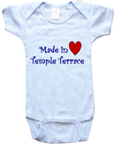 MADE IN TEMPLE TERRACE - TEMPLE TERRACE BABY - City Series - Blue Baby One Piece Bodysuit - size Medium (12-18M) (Terrace Series)
