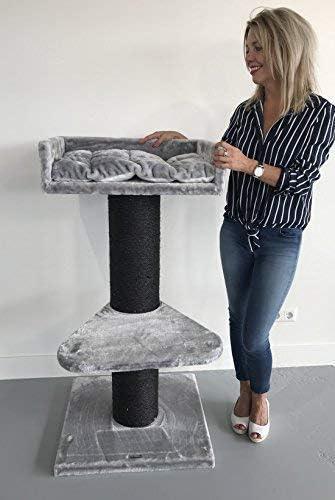 Rascador para gatos grandes Maine Coon Lounge Blackline Gris claro baratos arbol xxl maine coon gato adultos con hamaca gigante sisal muebles sofa casa escalador: Amazon.es: Productos para mascotas