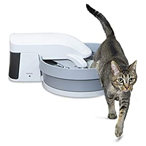 PetSafe Simply Clean Self-Cleaning Cat Litter Box, Automatic Litter Box, Works with Clumping Cat Litter 24