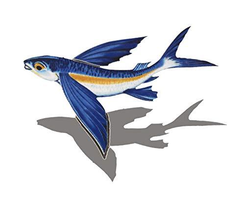 - Custom Mosaics, Inc. Flying Fish B Porcelain Swimming Pool Mosaic (8