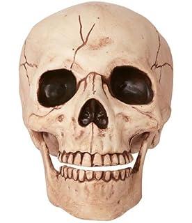 Amazon.com: Halloween Skeleton Skulls by Spookville: Toys & Games
