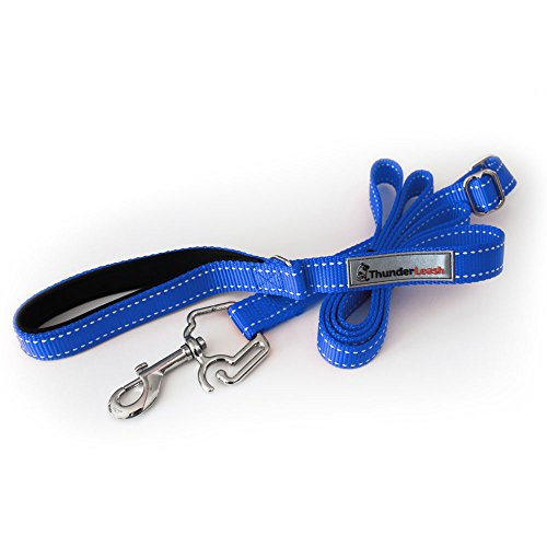 (ThunderLeash No-Pull Dog Leash (Small (12 to 25 lbs), Blue))