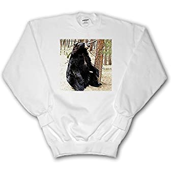 Certainly Black bear adult sweatshirt
