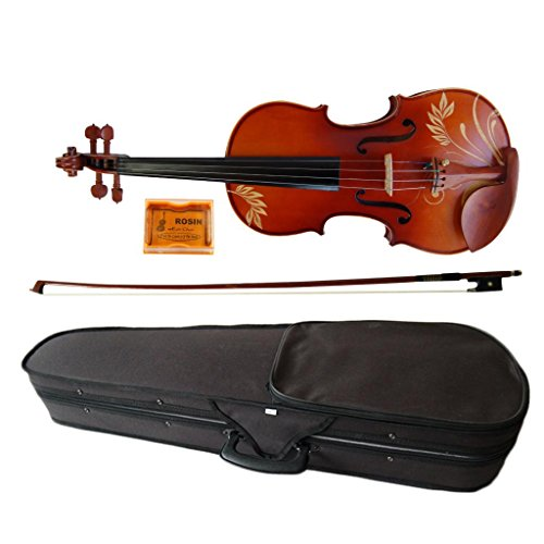 Kinglos 4/4 Full Size Ebony Fitted Solid Wood Colored Carving Violin with Case, Bow, Rosin (DH004)
