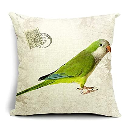 Amazon.com: Vintage Style Decorative Throw Pillows Case ...
