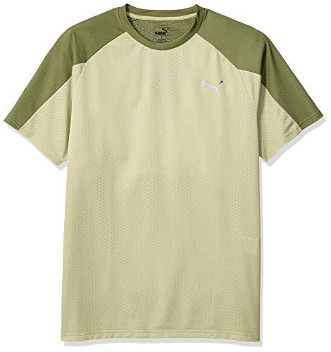 PUMA Men's A.C.E. Short Sleeve Block TEE, Elm-Olivine, S