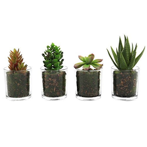 Assorted Miniature Artificial Cactus Plants product image