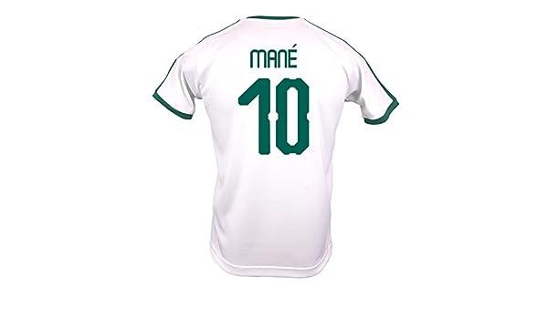 Amazon.com  PUMA Mané  10 Senegal Men s Home Jersey World Cup Russia 2018   Clothing 94e6150d8