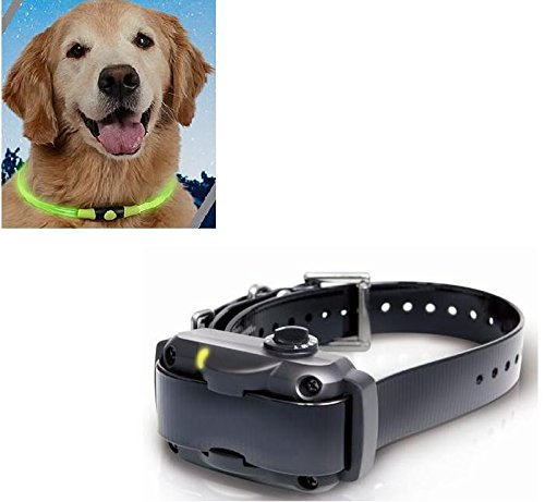 Dogtra YS600 Rechargeable with Free Nite Ize Glow Necklace