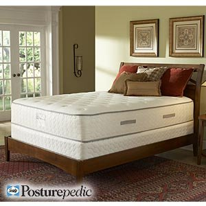 barryton plush queen mattress sealy mattress set box spring included