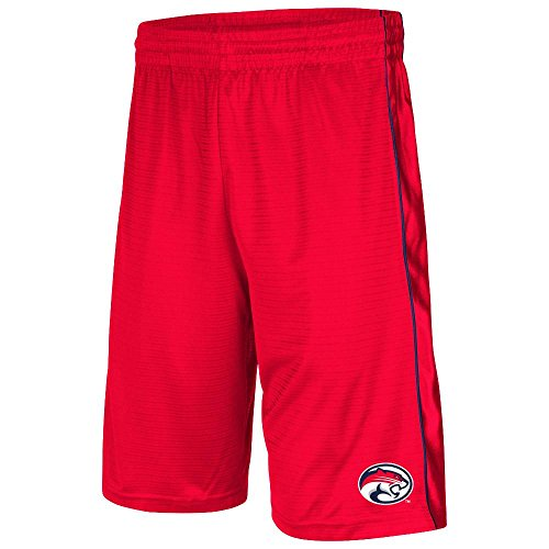 Youth NCAA Houston Cougars Basketball Shorts (Team Color) - L
