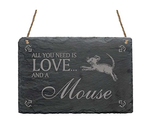 Schiefertafel Schild « All you need is LOVE and a MOUSE » mit Spring Maus MOTIV 02 Heim Haus Garten Dekoschild Dekoration