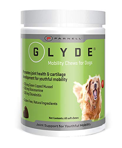 Parnell 120 Count Glyde Mobility Chews for Dogs