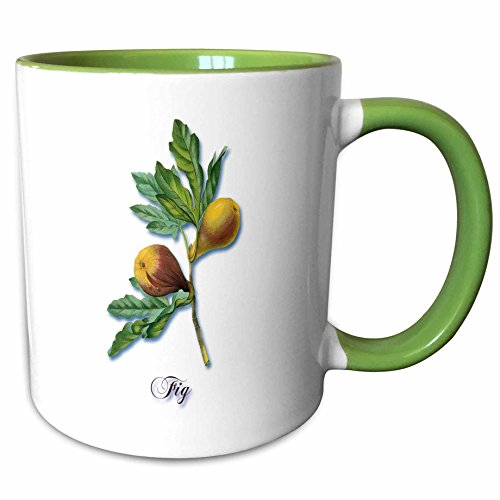 (3dRose BLN Flowers and Fruits by Pierre Joseph Redoute - Fig, Botanical Print of Fig Fruits on a Branch - 15oz Two-Tone Green Mug (mug_171193_12))