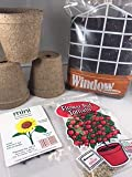 BIG RED TOMATO KIT with KID'S GREENHOUSE